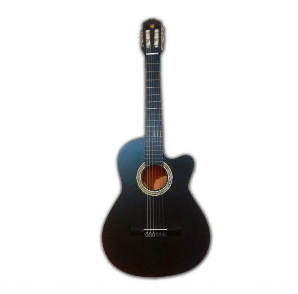 گیتار ایرانی